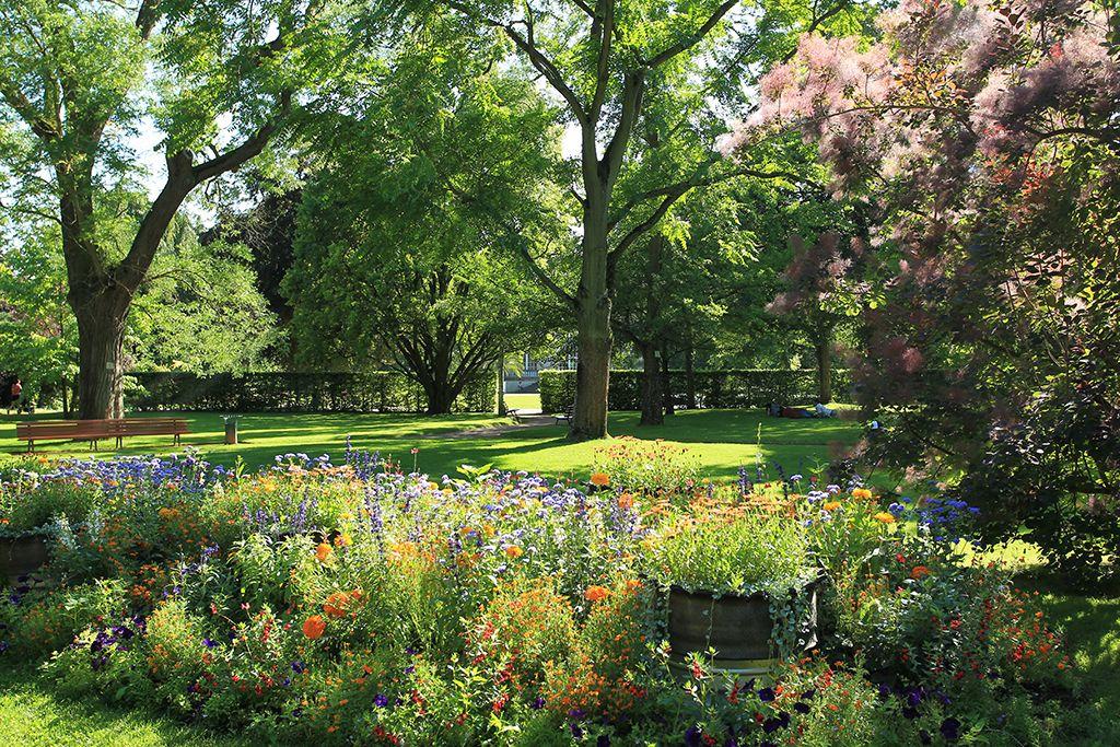 Culture jardin avoir les pouces verts a s 39 apprend - Serre jardin castorama reims ...