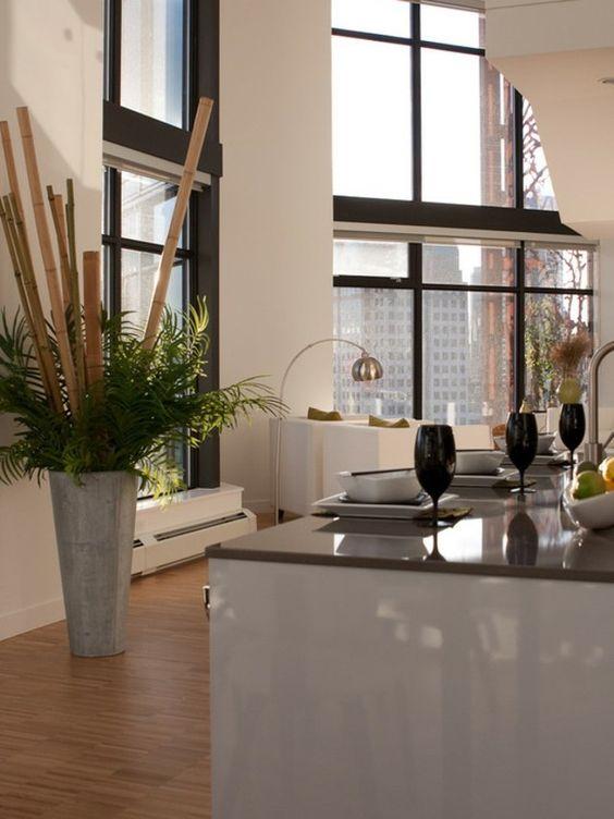 bambou-interieur-decoration-jardinage-entretien-conseils-entretenir