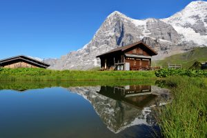 piscine biologique en montagne