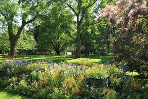 Un jardin boisé aux alentours de Reims