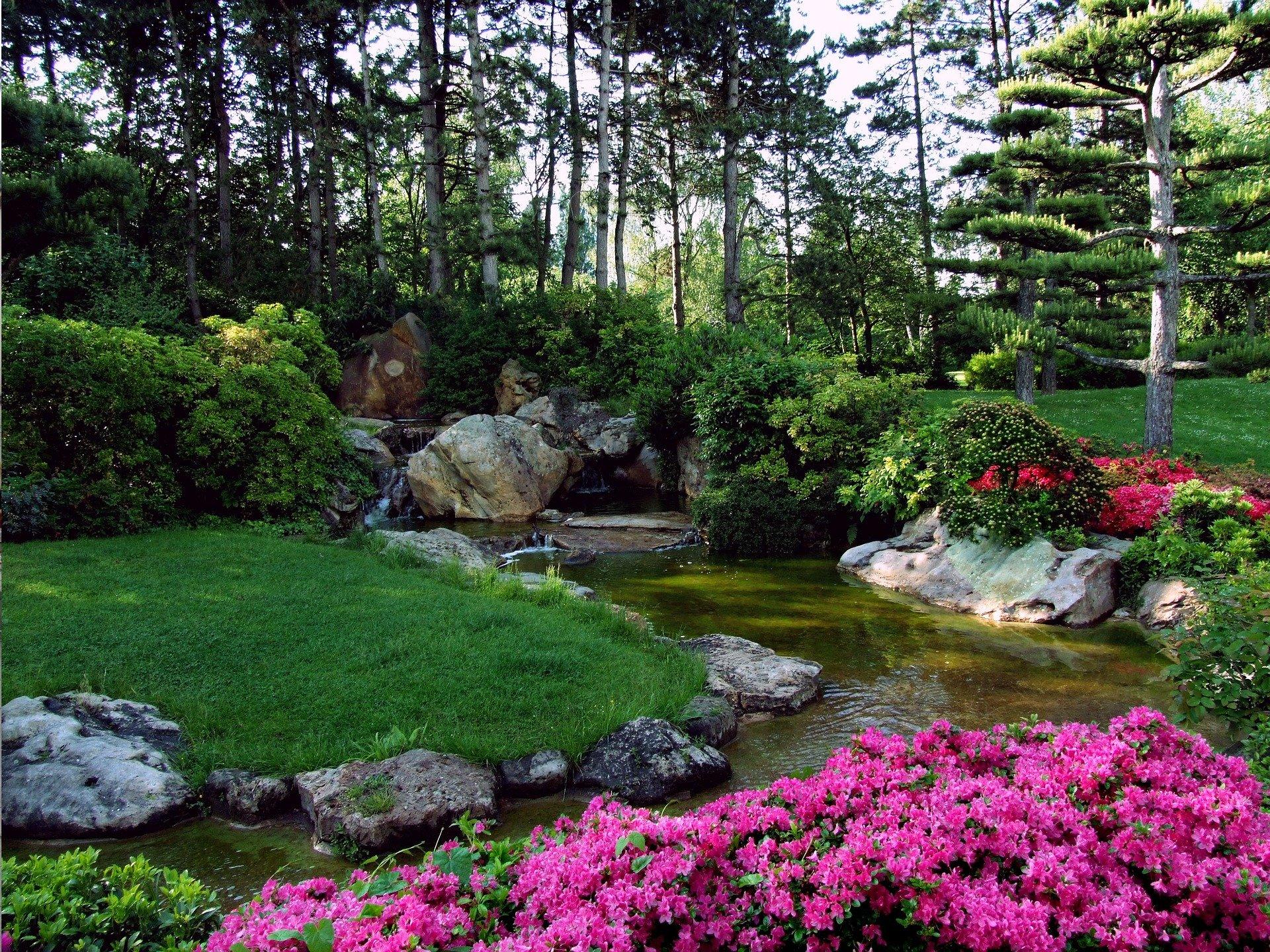 Jardin paysagre japonais avec un bassin